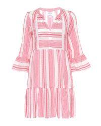 Velvet Pink Kleid Cambria aus Baumwolle