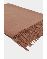 Nasty Gal - Multicolor Fringe In High Places Wool Scarf - Lyst
