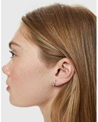 Sophie Buhai - Metallic Tiny Egg Stud Earrings - Lyst
