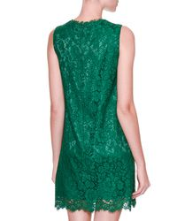 Dolce & Gabbana - Green Embellished-dragonfly Lace Shift Dress - Lyst