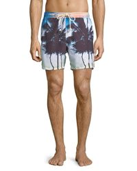 Sol Angeles - Blue Off Tropic Palm Tree Swim Trunks for Men - Lyst