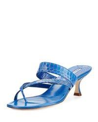 Manolo Blahnik - Blue Susa Snakeskin 50mm Slide Sandal - Lyst