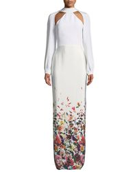 Cushnie et Ochs Multicolor Davina Long-sleeve Cutouts Floral-ombre Long Evening Gown