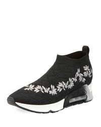 Ash Black Lolita Embroidered Slip-on Sneakers for men