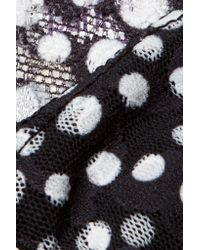 Hanky Panky - Black Flurries Polka-dot Stretch-lace Thong - Lyst