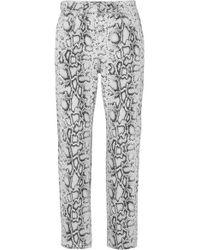 Pantalon Droit Taille Haute À Imprimé Serpent Bluff Alexander Wang en coloris Multicolor