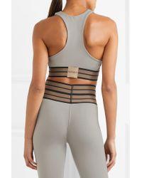 Olympia - Metallic Troy Cutout Stretch Sports Bra - Lyst