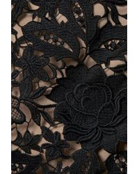 Lela Rose Black Besticktes Midikleid Aus Guipure-spitze