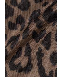 Olympia Brown Daphne Leopard-print Stretch-jersey Sports Bra
