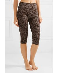 Olympia Brown Matteo Cropped Leopard-print Stretch-jersey Leggings