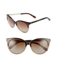 Kate Spade - Multicolor 'amayas' 53mm Cat Eye Sunglasses - Havana Beige - Lyst