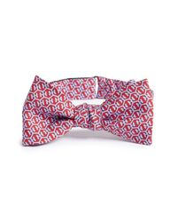 Vineyard Vines | Red 'honeycomb Whale' Silk Bow Tie for Men | Lyst