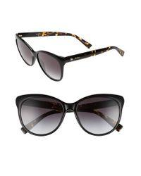 Max Mara Black Cosy 56mm Gradient Cat Eye Sunglasses -