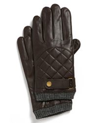 Polo Ralph Lauren Brown Quilted Racing Gloves for men