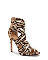 Jessica Simpson Multicolor Jyra Strappy Animal Print Dress Sandals