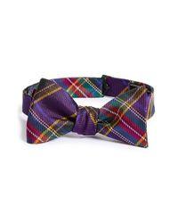 David Donahue | Purple Silk Bow Tie for Men | Lyst