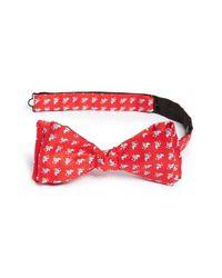Ferragamo | Red Elephant Print Silk Bow Tie for Men | Lyst