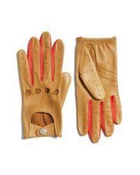 Rag & Bone | Multicolor Leather Driving Gloves | Lyst