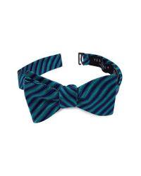 Ted Baker Blue Stripe Silk Bow Tie for men