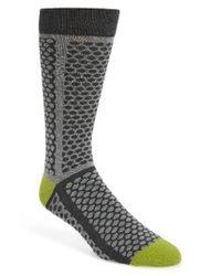 Ted Baker | Gray Copelan Dot Socks for Men | Lyst
