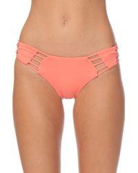 Rip Curl   Pink Designer Surf Luxe Hipster Bikini Bottoms   Lyst