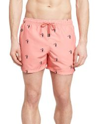 Nikben - Multicolor Toucan Print Swim Trunks for Men - Lyst