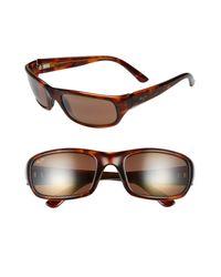 Maui Jim Brown 'stingray - Polarizedplus2' 56mm Sunglasses for men