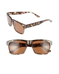 1901 Brown Hollis 57mm Sunglasses for men