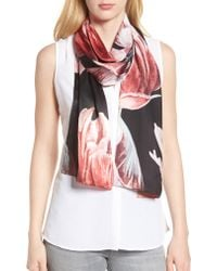 Ted Baker Black Tranquility Silk Scarf