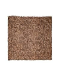 Madewell Brown Literal Leopard Print Scarf