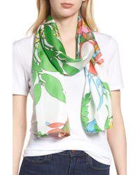 Echo - Green Alonnah Floral Silk Scarf - Lyst