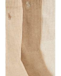 Polo Ralph Lauren Blue 3-pack Crew Socks, Beige for men