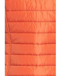 Barbour Orange Brae Qulited Vest