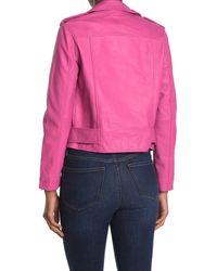 Walter Baker Pink Allison Leather Moto Jacket