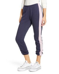 Wildfox Blue Knox Track Pants