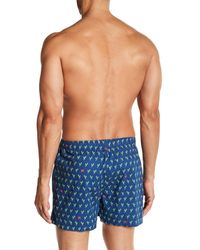 Tommy Bahama Blue Lobster Claw Boxer for men
