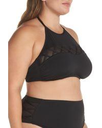 The Bikini Lab - Black Halter Bikini Top (plus Size) - Lyst