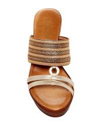 Italian Shoemakers Brown Tinley Mule Sandal