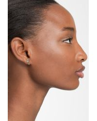 Marc By Marc Jacobs Brown Parrot Stud Earrings