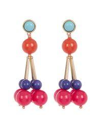 Trina Turk - Multicolor Bead Cluster Drop Earrings - Lyst