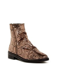 Free People Brown Amarone Ankle Boot