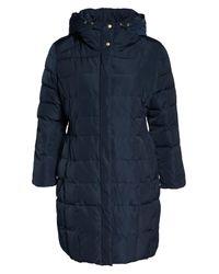Cole Haan Blue Bib Inset Coat (plus Size)