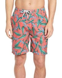 TRUNKS SURF AND SWIM CO Multicolor Swami Birds Of Paradise Print Swim Trunk for men