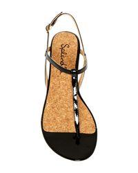 Splendid Brown Edgewood Wedge Sandal