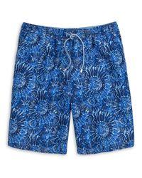 Peter Millar Blue Tabby Shells Swimwear for men