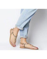 Office Blue Samba Toe Post Sandals