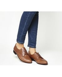 Office Brown Reach Softy Lace Up Brogues
