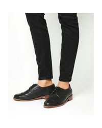 Office Black Freddy Lace Up Brogue