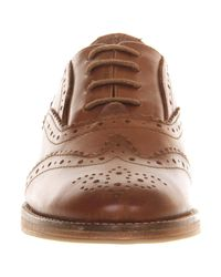 Office Brown Kentucky Lace Up