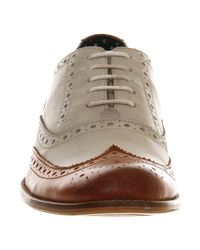 Office Brown Frankie Brogue for men